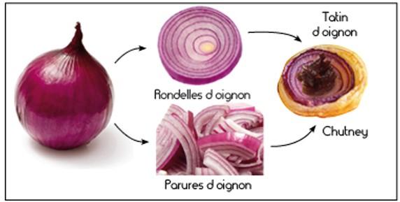 oignons-image-